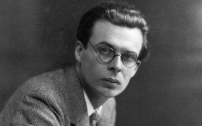 Socionika a Huxley. Proč právě on?